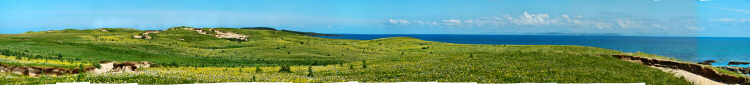 Picture of a panoramic view over a machair with lots of flowers